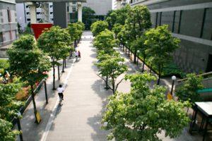 tachikawa05-300x200.jpg