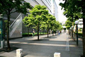 tachikawa06-300x200.jpg