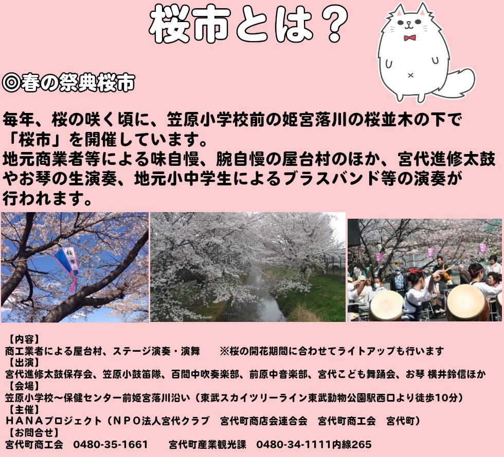 what_sakuraichi